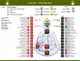 Human Design Chart Human Design Astrology Quantum Alignment System