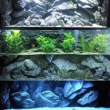 Aquarium Backgrounds 17 Best Aquarium Backgrounds Images In 2019 Aquarium Backgrounds