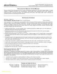 Free Sample Resume Examples New District Manager Resume Sample For