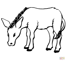 Small Picture Donkeys coloring pages Free Coloring Pages