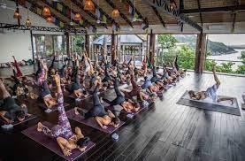 certified yoga teacher training cost