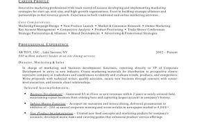 Resume For Accounting Job Example Of College Student Resume