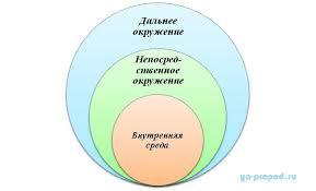 Внутренняя и внешняя среда организации среда менеджмента  Пирог организационной седы