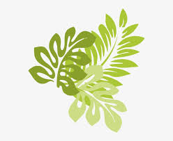 jungle leaves jungle leaves vector png