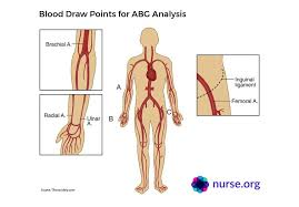 Know Your Abgs Arterial Blood Gases Explained Nurse Org