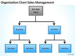 Business Flow Chart Origanization Sales Management
