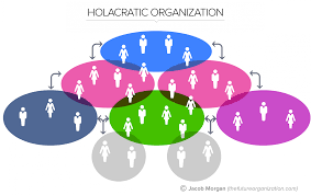 Types Of Organizational Chart In Management The 5 Types Of Organizational Structures Part 5 Holacratic