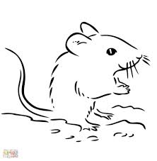 Simple Mouse Drawing Cute Deer Mouse Coloring Page Free Printable ...