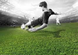 Domo Sports Grass