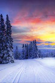 Wallpaper Norway, Winter, Forest, Snow ...