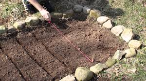 Kitchen Garden Plants Planting Vegetables How To Plant A Small Vegetable Garden Youtube