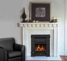 fireplaces gas insert fireplace natural gas fireplace inserts livingroom sofa pictures glamorous gas insert