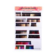 Issue Professional Color Chart Hot Item Wall Hanging Display Hair Color Chart With Detachable Hair Swatches