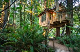 Treehouse masters mirrors Lloyd Wright Treehouse Point Homecrux 20 Best Treehouse Hotels From Around The World