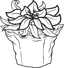 Displaying 1 poinsettia3 printable coloring pages for kids and teachers to color online or download. Printable Poinsettia Coloring Page For Kids Supplyme