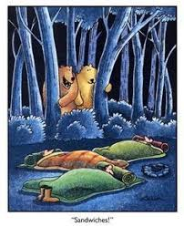 People in sleeping bags are the soft tacos of the bear world ... via Relatably.com