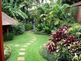 Small Picture A Tropical Garden Design in Sydney Blog For Valley Garden landscapes