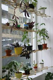 diy instant hanging shelves for houseplants