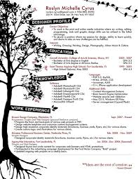 Clever ways of Presenting your Degree on your CV    CV Plaza