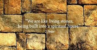 Image result for living stones