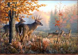 moose wall decor pictures deer animal nice landscape oil painting canvas art print living room wall paintings