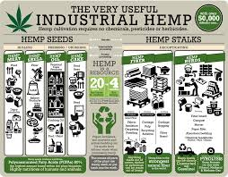 Hemp Uses Chart Pin On Clever Products