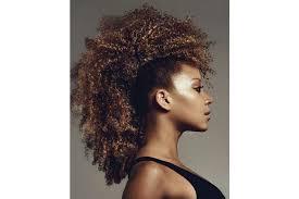 Coiffure Africaine 12 Modèles De Coiffures Afros Inspirantes