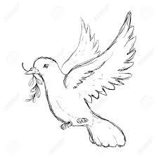 鳩は平和のアイコン ベクトル イラスト グラフィック デザインの鳥