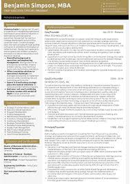 Sample Of Executive Resumes Executive Director Resume Samples And Templates Visualcv