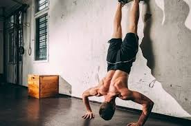muscle building bodyweight workout routines