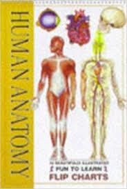 Anatomy Flip Charts Human Anatomy Flip Charts Amazon Co Uk 9781860195952 Books