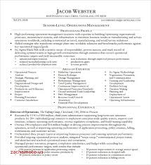 Sample Executive Resume Format Top Result 15 Unique Executive Resume Samples Image 2018 Phe2 2017