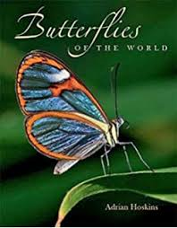Butterflies of the World by Hilary Leonard Lewis (1985-09-01):  Amazon.co.uk: Books