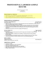 Profile Section Of Resume Newest Impression Laborer Professional 1