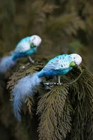 Clip Vogel Papagei Wellensittich Christbaumschmuck Mit Federn Blau Weiss 2er Set
