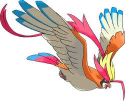 Pokemon 10018 Shiny Mega Pidgeot Pokedex Evolution Moves