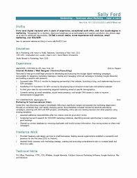 Marketing Resume Samples Unique Free Resume Sample New Best Pr
