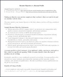 Personal Qualifications Statement Example Resume Summary Resume Profile Summary Example Resume