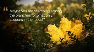 Rumi's Best Quotes Amazing Rumi Quote