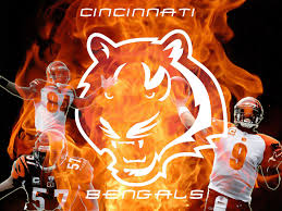 cincinnati bengals photos