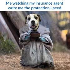 2,193 likes · 38 talking about this · 4 were here. Client Spotlight Cushman Insurance Group Metter Media Boston Social Media Management