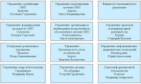 Реферат Фонд обязательного медицинского страхования структура и  Фонд обязательного медицинского страхования структура и функции