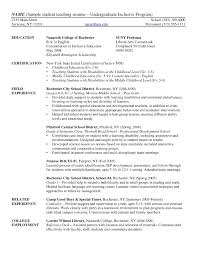 Sample Resume Undergraduate Teaching Assistant Inspirationa Resume