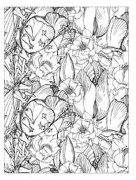 Clippedonissuu From Beautiful Flowers Detailed Floral