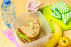 Image result for packed lunch ideas