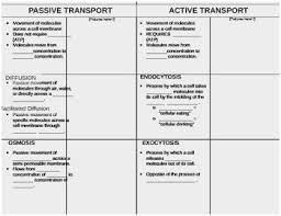 Venn Diagram For Osmosis And Diffusion 54 Prettier Gallery Of Create A Venn Diagram Comparing Osmosis And
