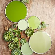 Green paint colors Bedroom Succulent Green Paint Colors Valspar Paint Green Paint Colors Our Editors Swear By
