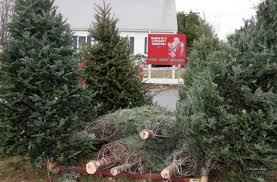 Marshfield Kiwanis Christmas Trees \u0026 Wreaths Sale | MA 02050
