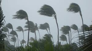 Global warming affects tropical cyclone ...