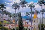 imagem de Caratinga Minas Gerais n-6